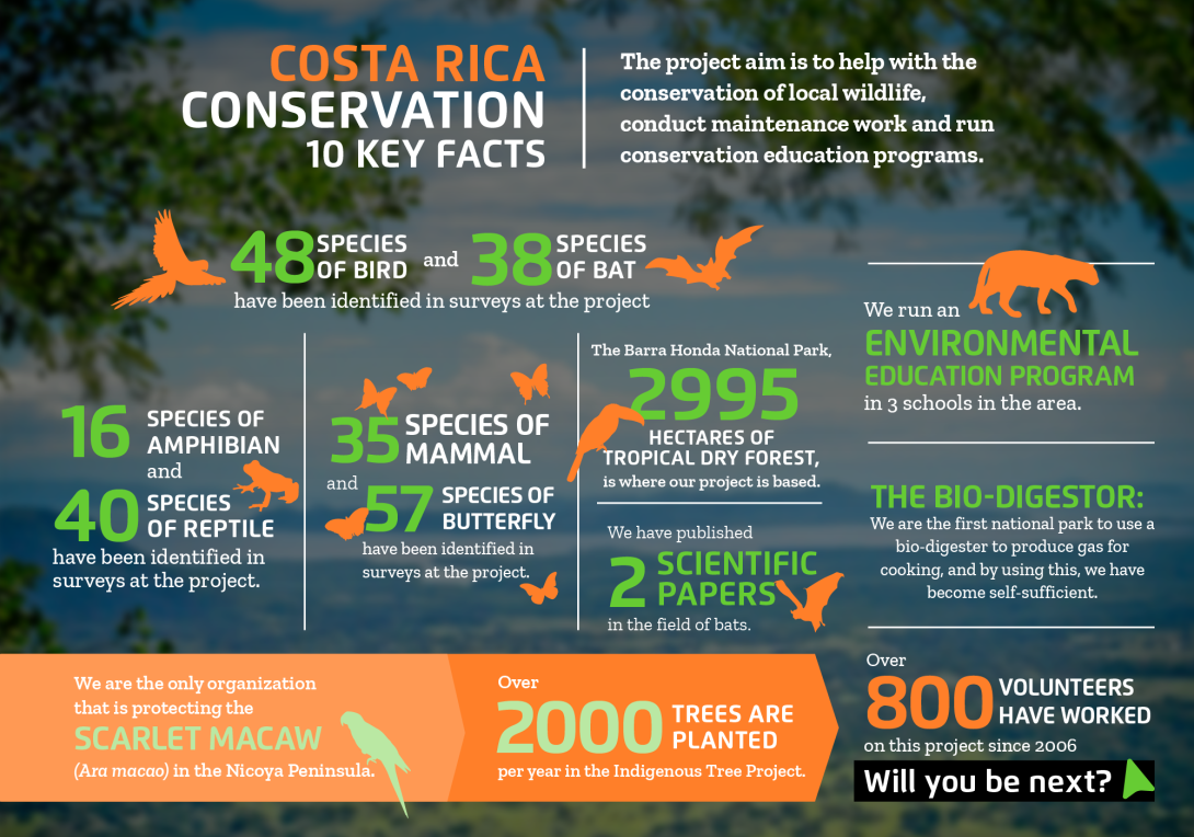 Interesting facts about conservation volunteering in Costa Rica with projects abroad